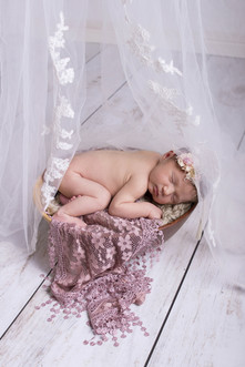 030 Seven_Oaks_Photography_Posed_Newborn