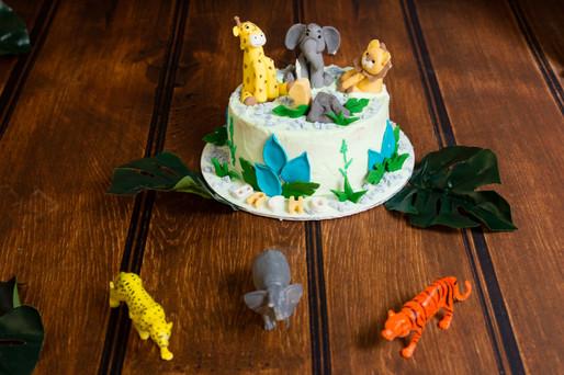 016 Seven_Oaks_Photography_Cake_Smash.jp