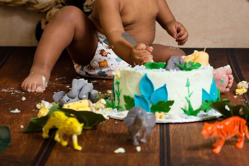 022 Seven_Oaks_Photography_Cake_Smash.jp