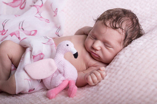 043 Seven_Oaks_Photography_Posed_Newborn