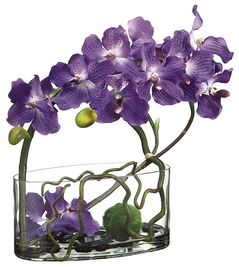 "18""H X 7""W X 14"" Vanda Orchid/Twig/Mass Ball in Glass Vase"