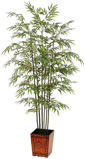 7.5' Bamboo Tree in Wood Container