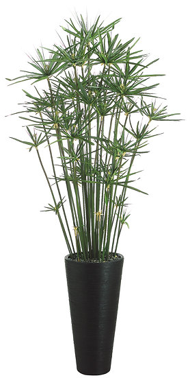"84""H X 28""W X 28""L Cypress Grass in Bamboo Container"