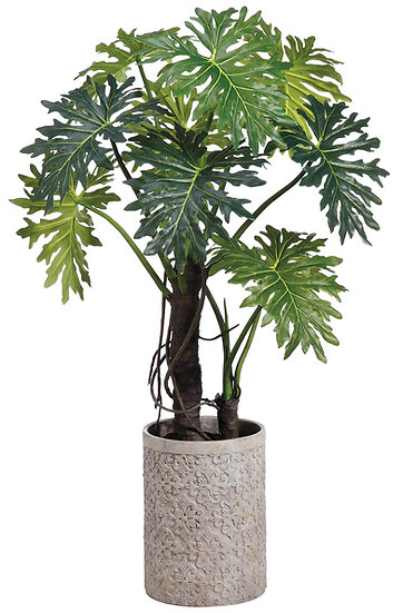 "71"" EVA Plume Split Leaf Plant in Fiber Cement Planter"