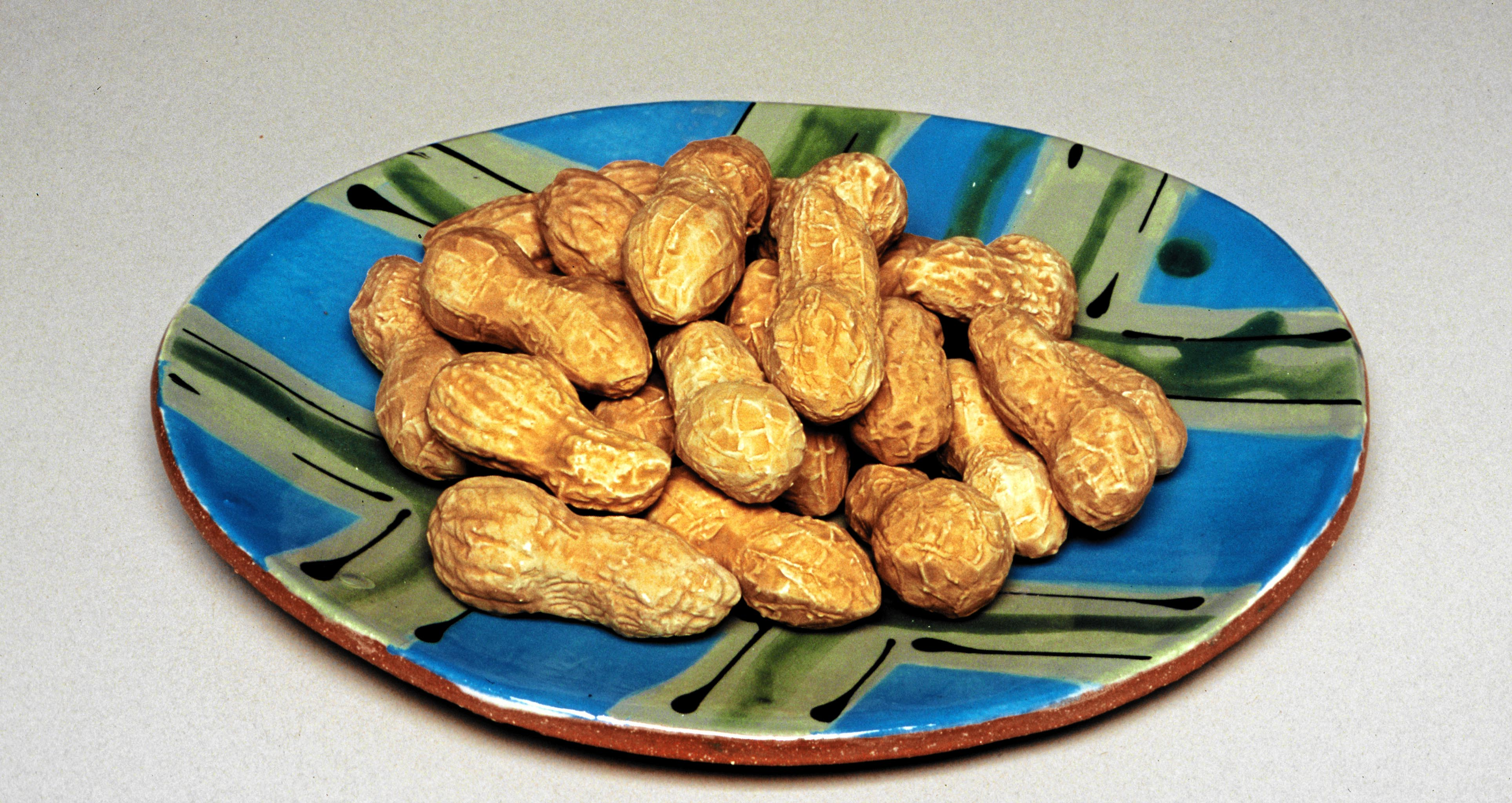 Peanuts on Plate