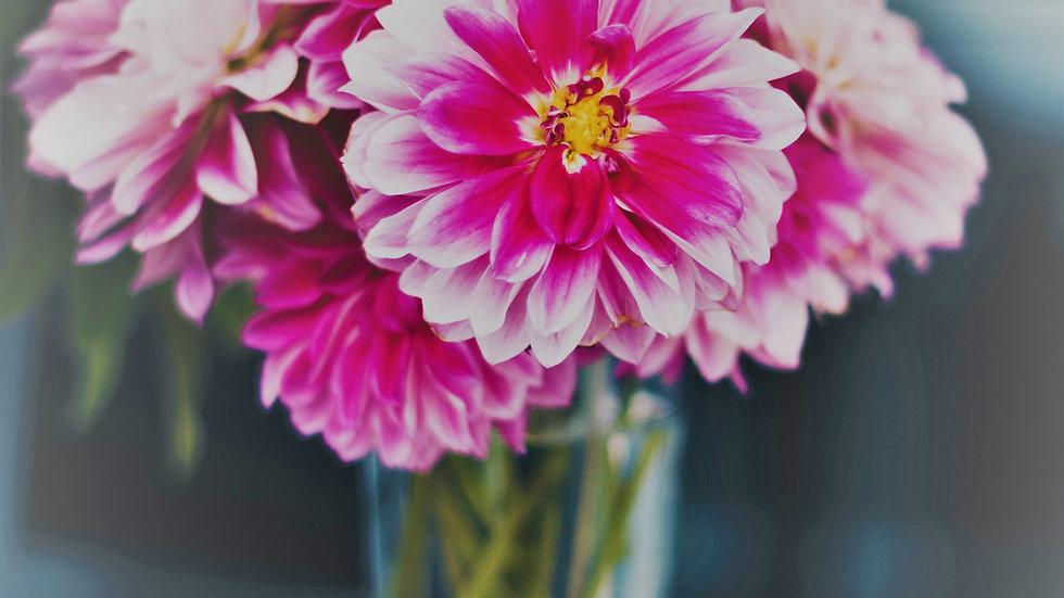 Flower #14
