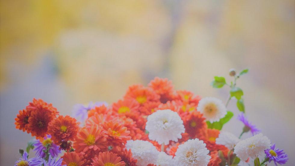 Flower #16