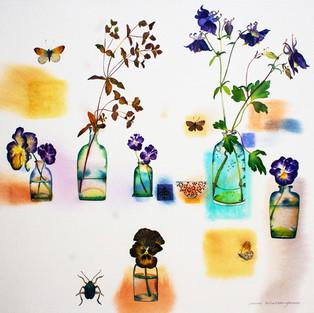 Pansies, Aquilegia and Butterflies