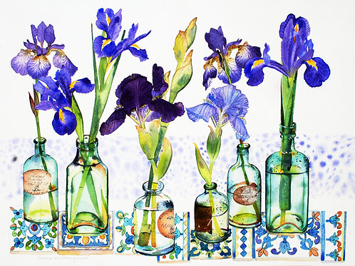 Irises in Bottles - limited edition giclee print