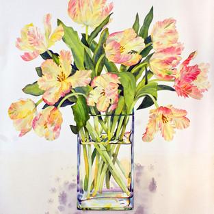 Libretto Tulips