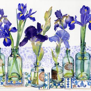 Irises in Vintage Bottles