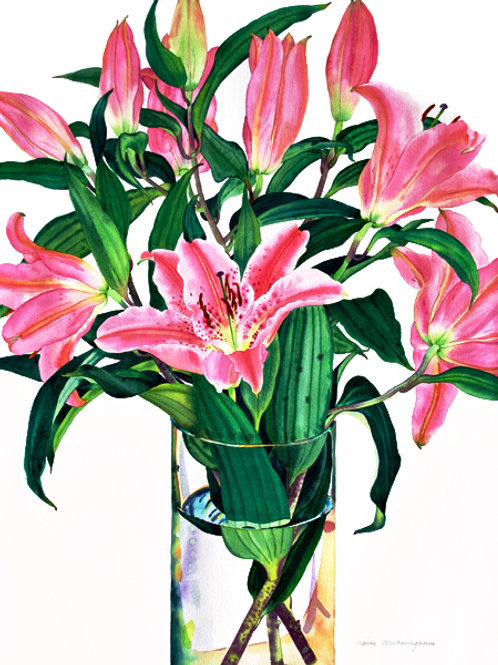 Pink Lilies - limited edition giclee print