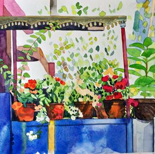 Flowering Pots