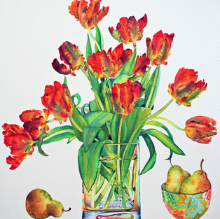 Parrot Tulips and Pears