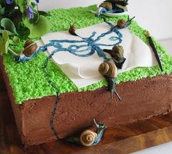 Snail & Butterfly Cake