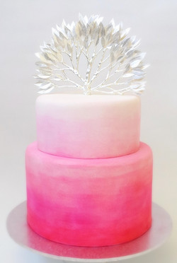 Hot pink ombre wedding cake