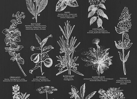 Kitchen Witch Essentials Poster