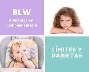 BLW_Alimentación_Complementaria.png