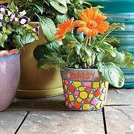 paint-your-own-stone-mosaic-flower-pot~1