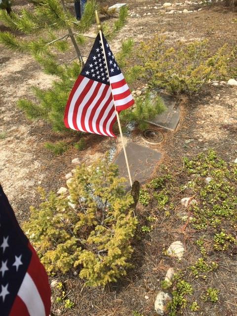Flags for Veterans 2019