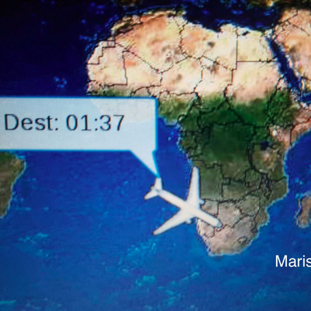 Impresiones del viaje a Africa - Johannesburgo - Toque técnico -