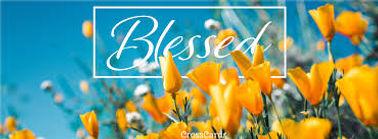 Blessed Yellow Tulips.jpg