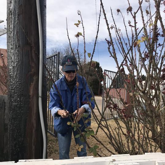 Garden clean up 3.jpg