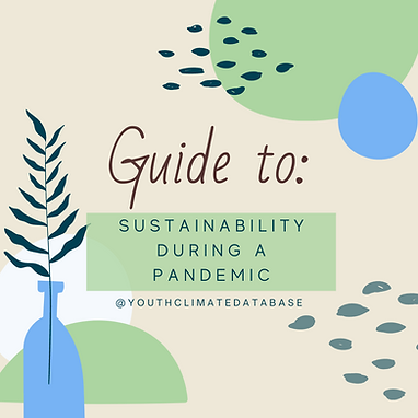 Guide to Sustainability Pt. 1.png