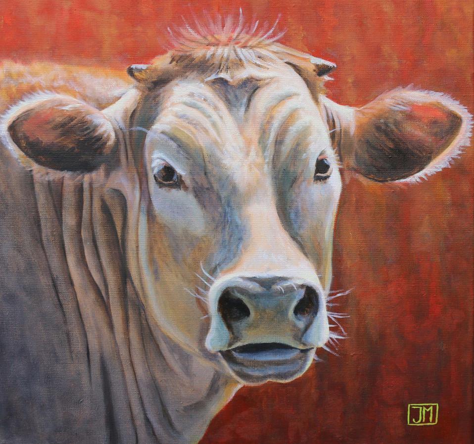Rode koe - olieverf op linnen - 40x40cm
