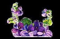 PurpleRose2_edited_edited.png