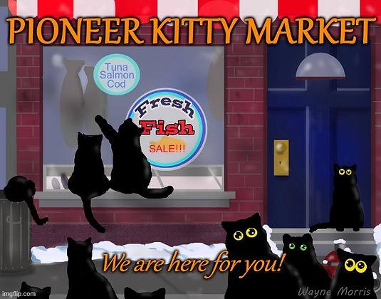 Pioneer Kitty Market.jfif