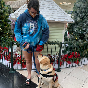 Diane's Diary #40: Filming Kaitlyn and Mowgli the Service Dog