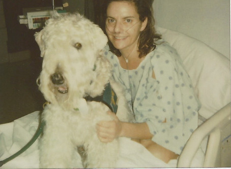 Diane's Diary #2: How I went from being an Animal Rescue Advocate to Human-Animal Bond Enthusiast