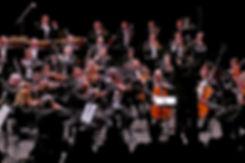 Philharmoniker (11).jpg