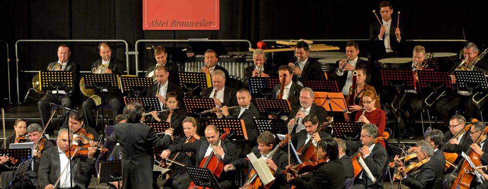 Philharmoniker (39).jpg