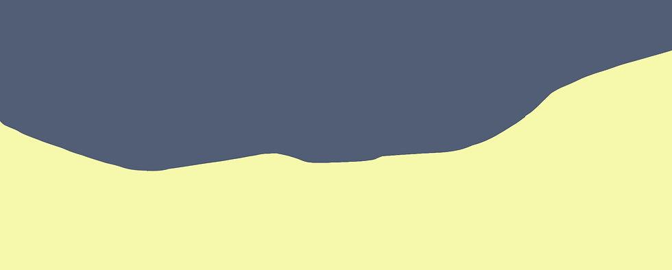 2021-FSR-strip.jpg