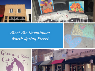 Meet Me Downtown: N. Spring Street on the Move!