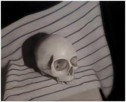 Skull with Dishtowel