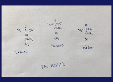 Should You Supplement With BCAA's?