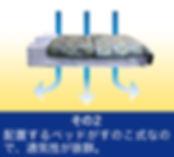 安置配置図2.jpg