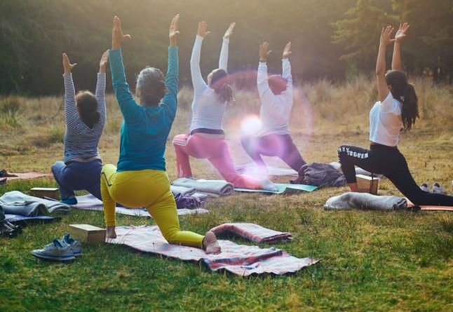 Woodland Yoga