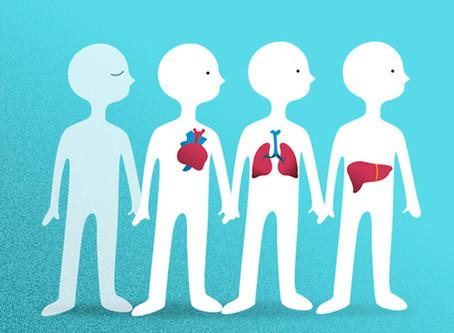 Preguntas sobre Donación y Trasplante de órganos.