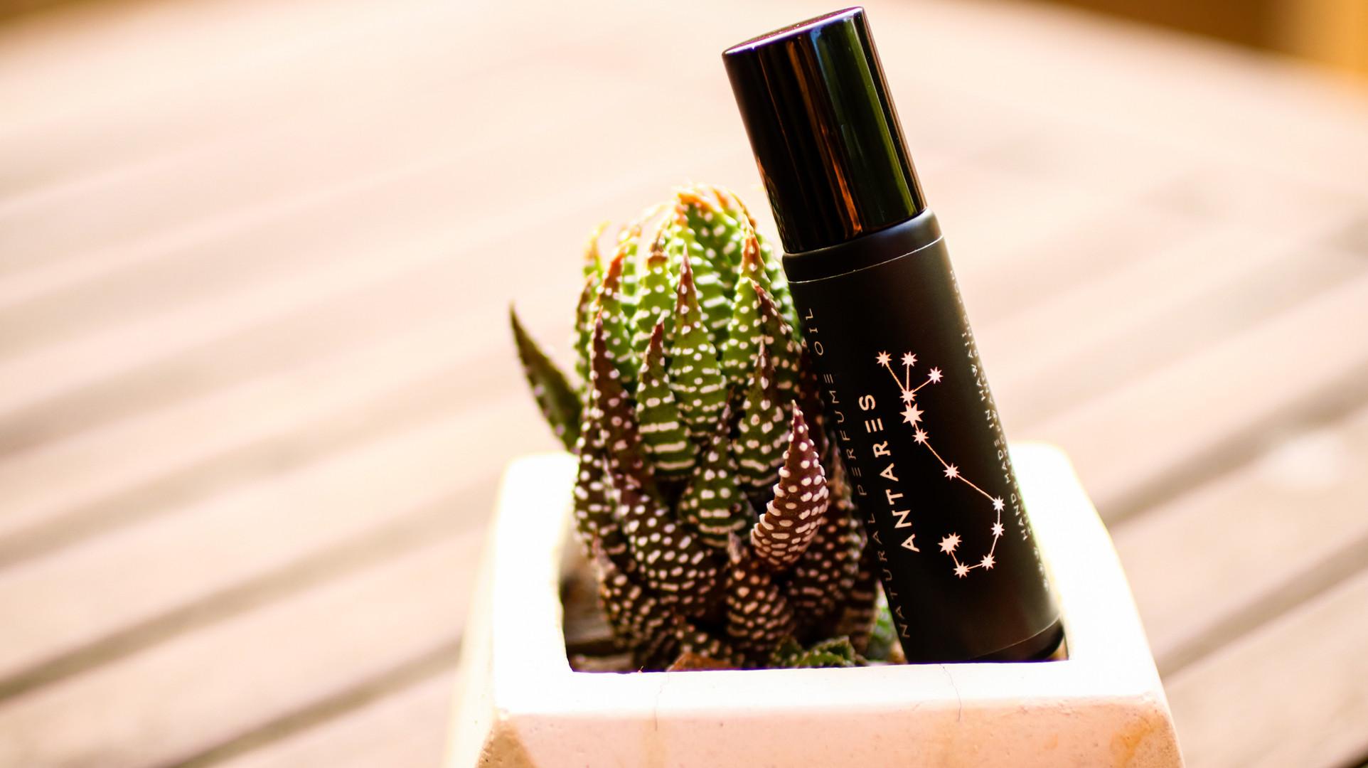 natural perfume antares .jpg