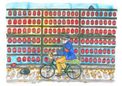 11 November bicycle