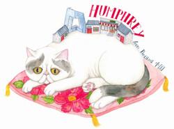 Liuba Draws Pet Portrait