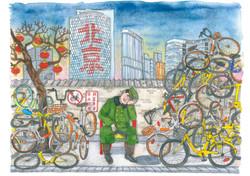 1 January bikes