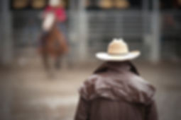 Cowboy am Rodeo