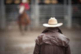 Cowboy at the Rodeo