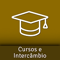 cursos-intercambio.png