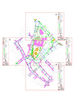 Cadastral and topographic map